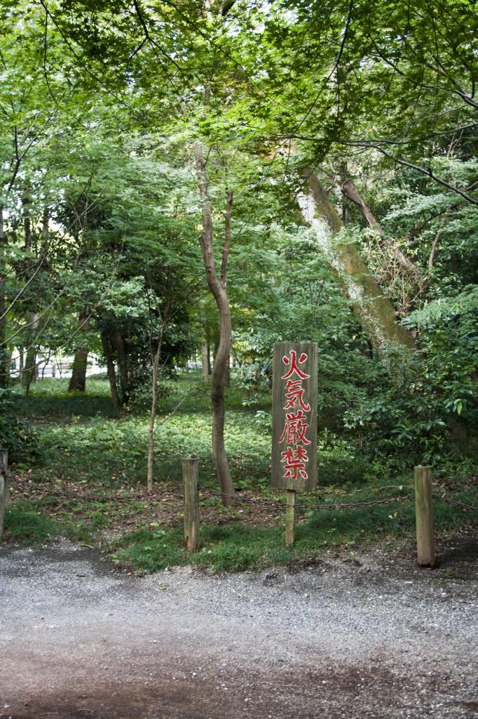 Zen Garten mit Marderhunden (nicht sichtbar auf dem Bild)